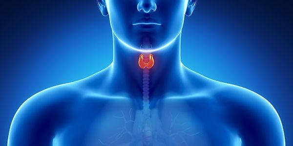 Cancro Tiroide