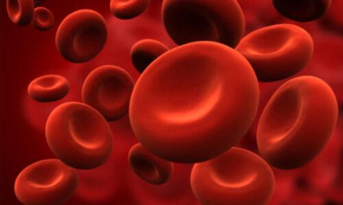 Anemia Da Carenza Di Ferro Sintomi Cause